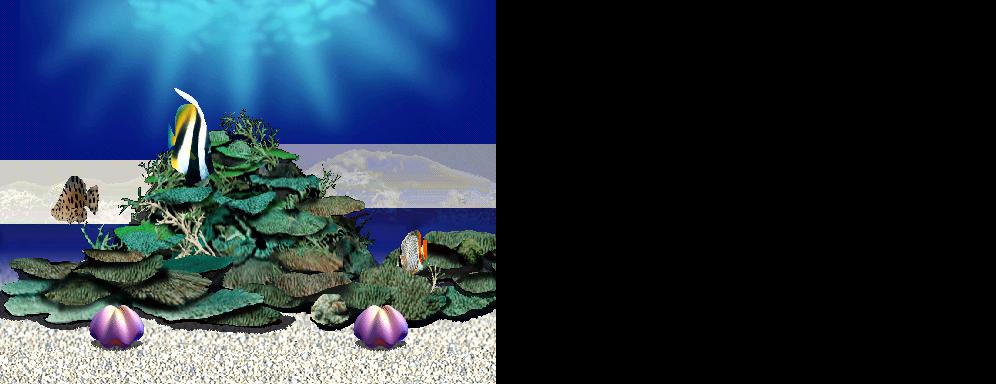 Aqua Stage