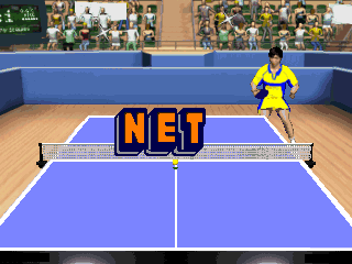 Interactive TV Games 49-in-1 Ping Pong