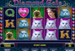 Diamond-cats.jpg